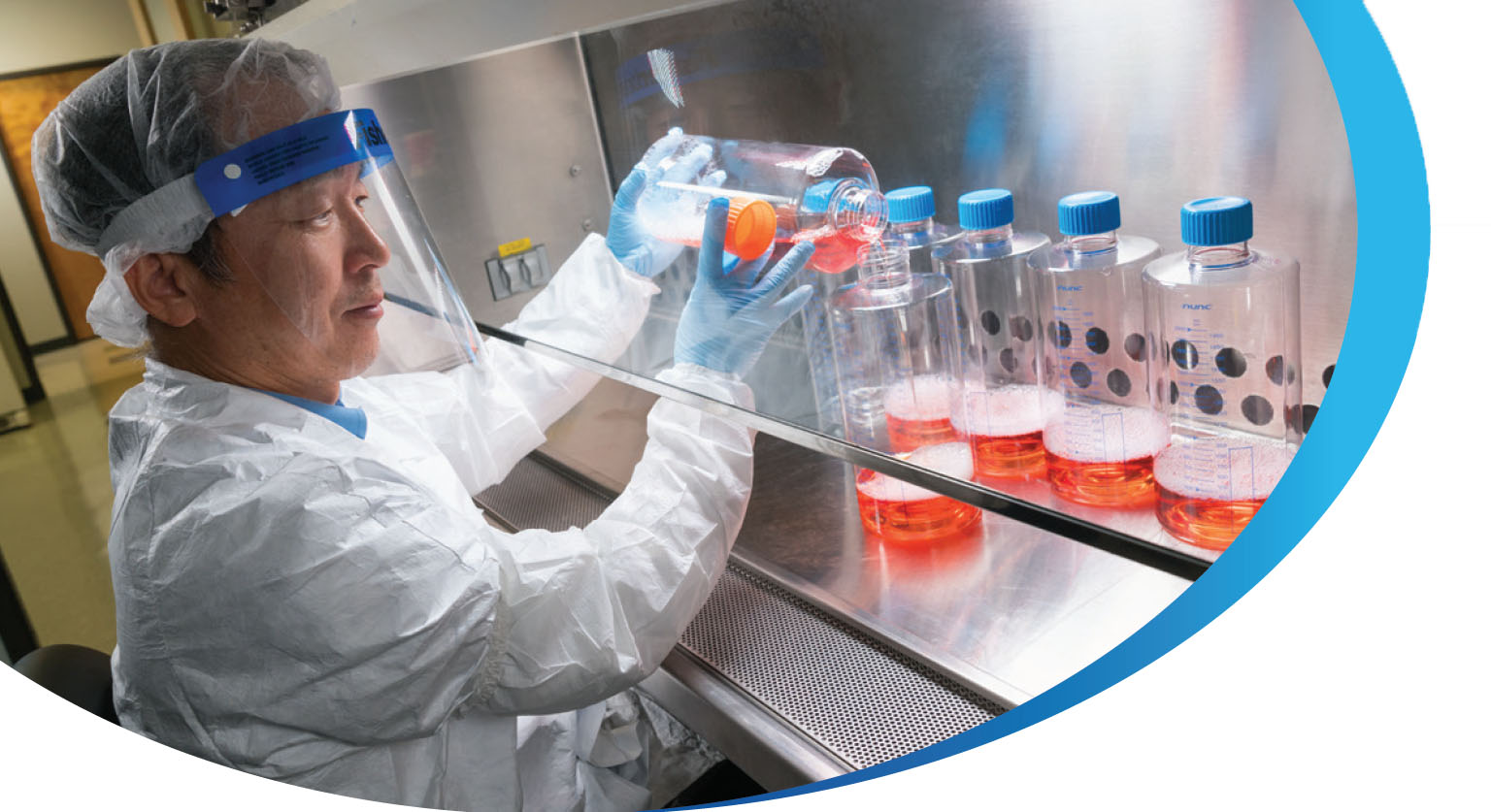 Cell Culture Development